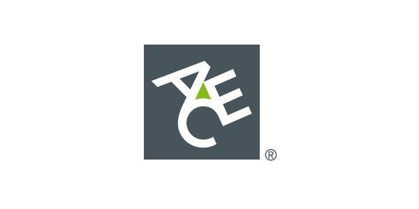 ACE European Group Limited – Sucursal em Portugal